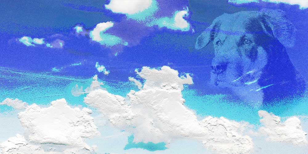 Møde i himmelen